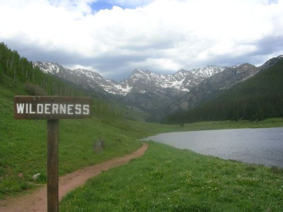 wilderness1